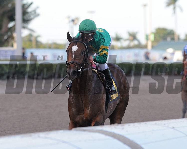 Mask wins the 2018 Mucho Macho Man Stakes<br /> Coglianese Photos/Kenny Martin