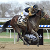 Discreet Lover wins the 2018 Excelsior<br /> Coglianese Photos