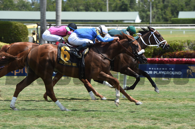 Figarella's Queen wins the 2018 Sanibel Island<br /> Coglianese Photos/Leslie Martin