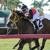 Conquest Sandman, Carlos Montalvo, Miesque's Approval  Stakes, $75,000, Gulfstream Park, April 28, 2018