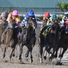 Classic Rock wins the 2018 Gulfstream Park Sprint Stakes<br /> Coglianese Photos/Andie Biancone