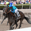 Cache - Maiden Win, Gulfstream Park, January 27, 2018<br /> Coglianese Photos/Annette Jasko
