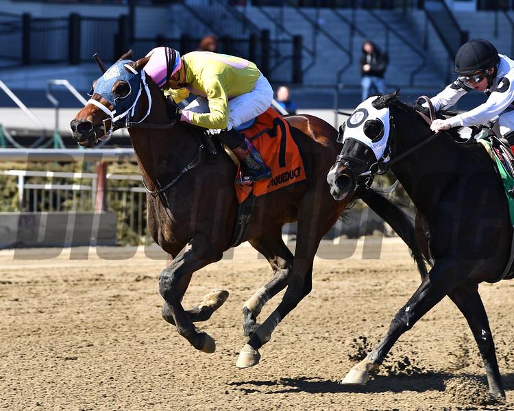 J S Bach wins the 2018 Stud Muffin Stakes<br /> Coglianese Photos/Joe Labozzetta