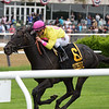 Offering Plan, Javier Castellano, Kingston Stakes, $125,000, Belmont ark, May 28, 2018