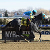 Lezendary - Maiden Win, Aqueduct, January 14, 2018<br /> Coglianese Photos