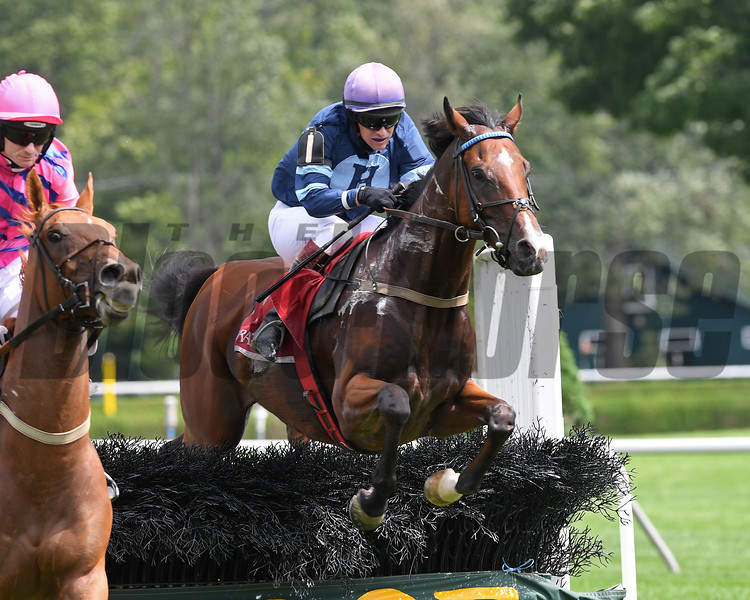 Surprising Soul wins the 2018 Michael G. Walsh Novice Stakes<br /> Coglianese Photos/Chelsea Durand