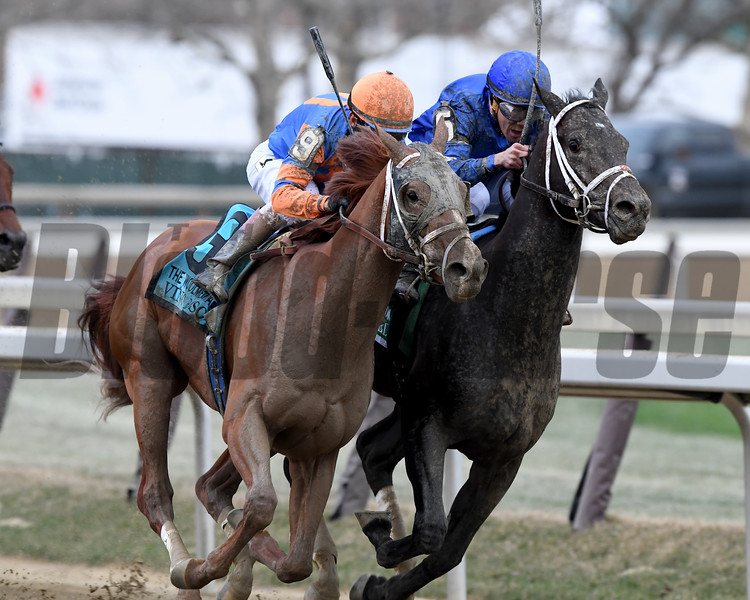 Vino Rosso wins the 2018 Wood Memorial<br /> Coglianese Photos/Robert Mauhar