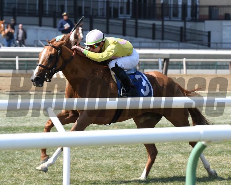 Uni wins the 2018 Plenty of Grace Stakes<br /> Coglianese Photos/Annette Jasko