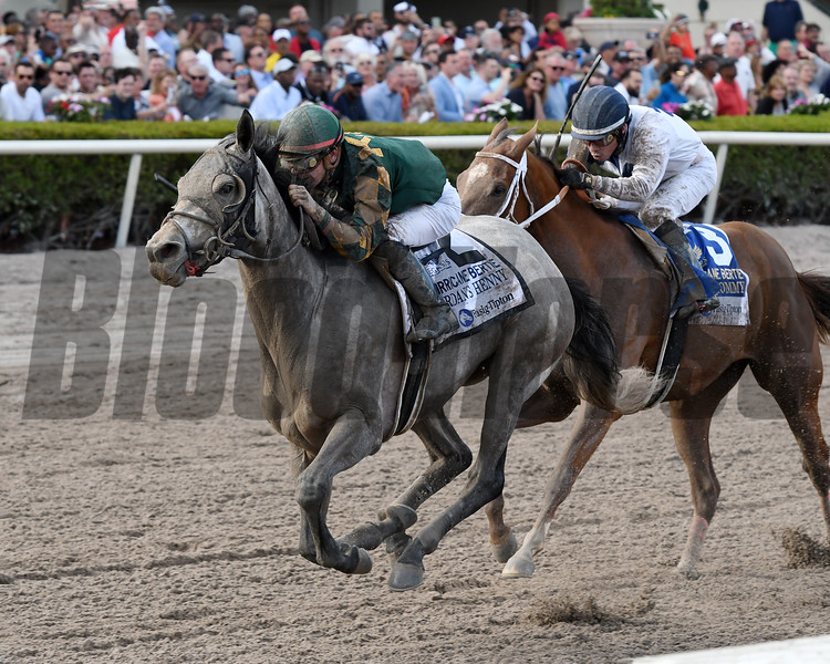 Jordan's Henny wins the 2018 Hurricane Bertie<br /> Coglianese Photos/Annette Jasko