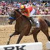 Hoppertunity wins 2018 Brooklyn Invitational Stakes at Belmont Park June 9, 2018. Photo: Coglianese Photo/Joe Labozzetta