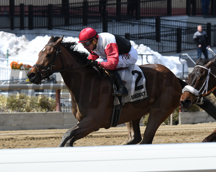Split Time wins the 2018 Maddie May Stakes<br /> Coglianese Photos/Annette Jasko