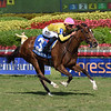 Thewayiam wins the 2018 Herecomesthebride Stakes<br /> Coglianese Photos