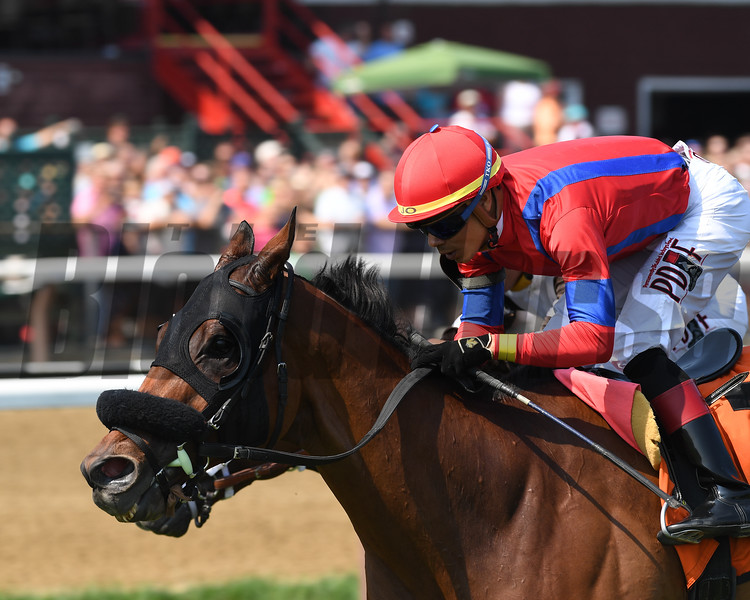 Sandy'z Slew wins the Troy Handicap at Saratoga Sunday, August 5, 2018. Photo: Coglianese Photo/Chelsea Durand