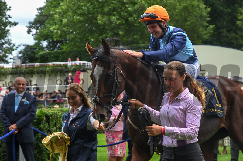 Accidental Agent; Charles Bishop Jockey; win the G1 Queen Anne Stakes; Royal Ascot; Ascot UK; 6/19/18; photo by Mathea Kelley