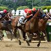 Hoppertunity wins 2018 Brooklyn Invitational Stakes at Belmont Park June 9, 2018. Photo: Coglianese Photo/Dave Alcosser