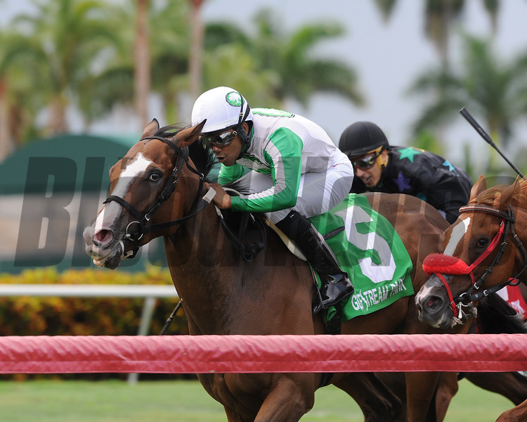 Archer Road wins the 2018 Copingaway Stakes<br /> Coglianese Photos/Kenny Martin
