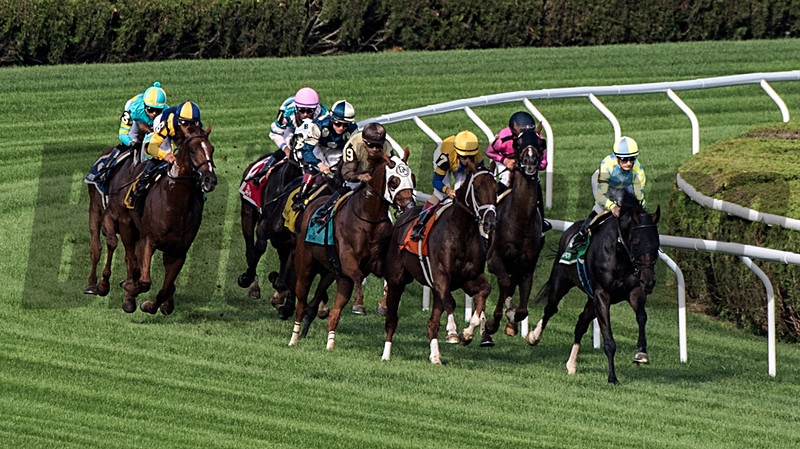 #5 Glorious Empire with jockey Julien Leparoux leads the field to the wire but was caught at the wire by #2 Channel Maker with Joel Rosario to cause a dead heat in the 60th running of The Bowling Green at the Saratoga Race Course Saturday July 28, 2018 in Saratoga Springs, N.Y.  Photo by Skip Dickstein