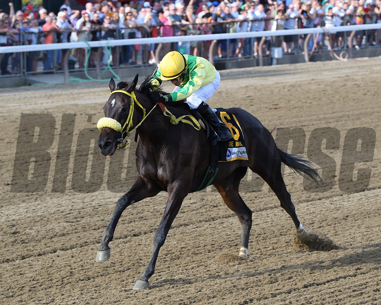 Tricky Escape wins the Waya Stakes at Saratoga Sunday, August 12, 2018. Photo: Coglianese Photos/Chelsea Durand