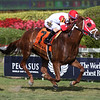 Oscar Nominated wins the W. L. McKnight Handicap<br /> Coglianese Photos/Zoe Metz