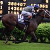 Maraud wins the 2018 American Turf Stakes