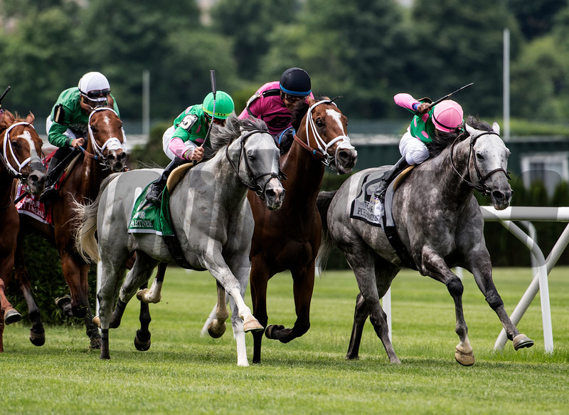 #5 Disco Partner rolls up the outside to win the 35th running of the Jaipur Invitational at Belmont Park Saturday June 9, 2018 in Elmont, N.Y.  June 9, 2018.  Photo by Skip Dickstein