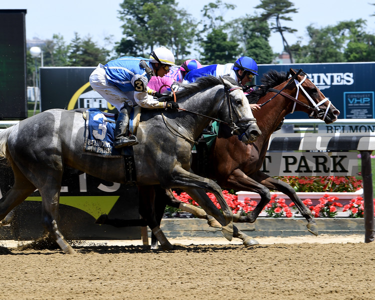 Prince Lucky wins 2018 Easy Goer Stakes at Belmont Park June 9, 2018. Photo: Coglianese Photos/Viola Jasko
