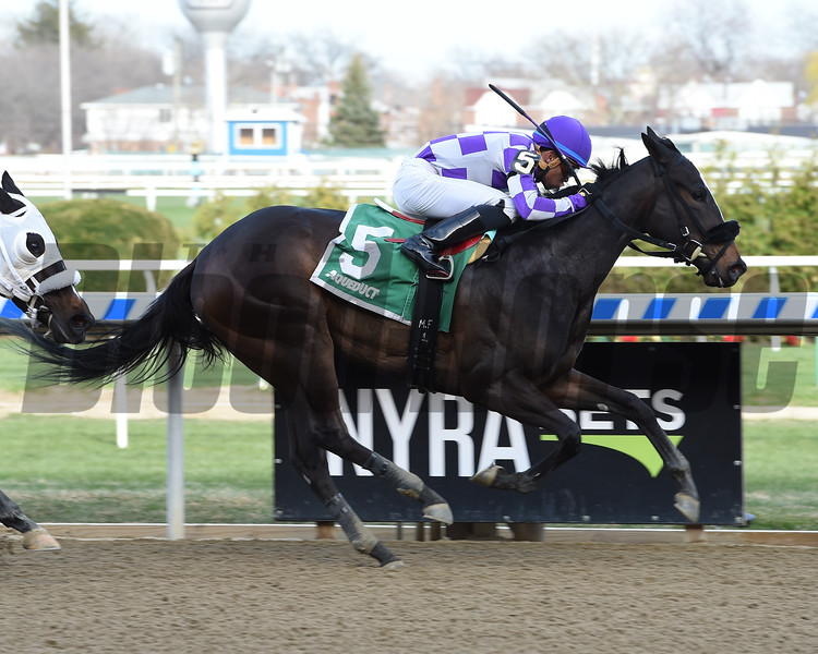 Baby Boss wins the 2018 New York Stallion Stakes<br /> Coglianese Photos