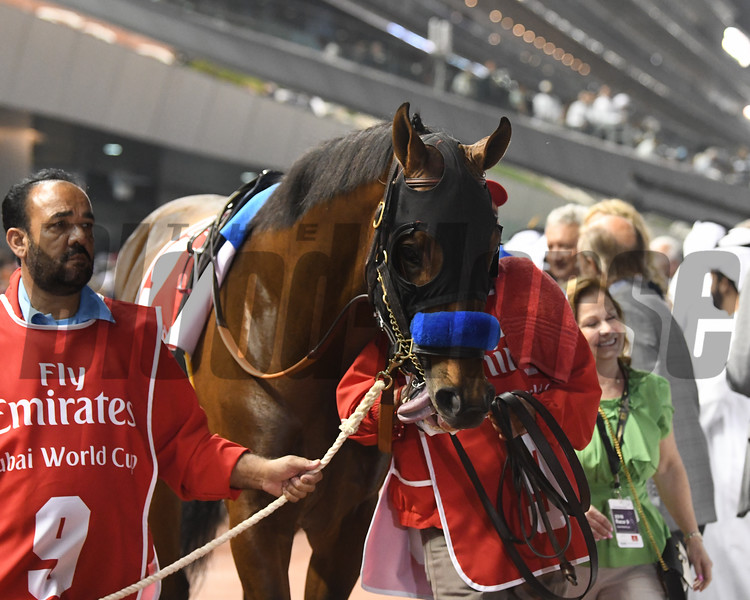 West Coast, Dubai World Cup; G1; Meydan Race Course; Dubai; March 31 2018, 2nd place