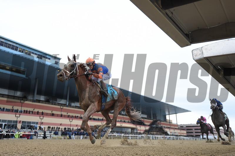Vino Rosso wins the 2018 Wood Memorial<br /> Coglianese Photos