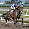 Coach Rocks wins the Gulfstream Park Oaks<br /> Coglianese Photos