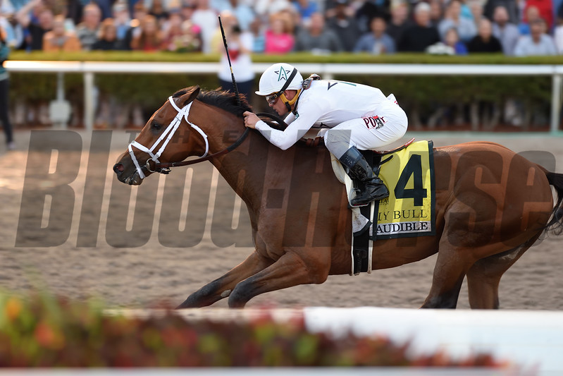 Audible wins the 2018 Holy Bull Stakes<br /> Coglianese Photos/Lauren King