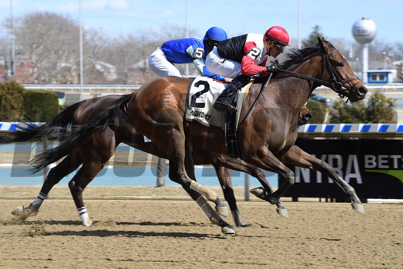 Split Time wins the 2018 Maddie May Stakes<br /> Coglianese Photos/Viola Jasko