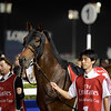 Awardee, Yutaka Take; Dubai World Cup; G1; Meydan Race Course; Dubai March 31 2018, 6th place