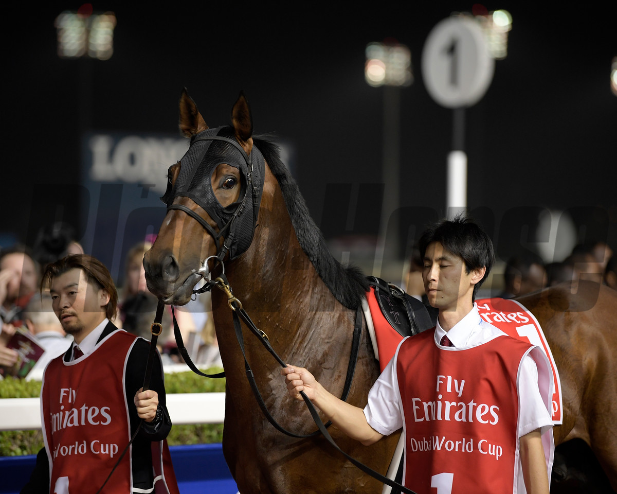 Awardee, Yutaka Take; Dubai World Cup; G1; Meydan Race Course; Dubai March 31 2018, 6th place