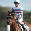 Dona Bruja. [Arg] with Jose Ortiz  wins The Lambholm South Endeavour Stakes  @ Tampa Bay Downs.; © Joe DiOrio/Winningimages.biz