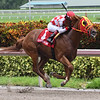 War Giant wins the 2018 Carry Back Stakes<br /> Coglianese Photos