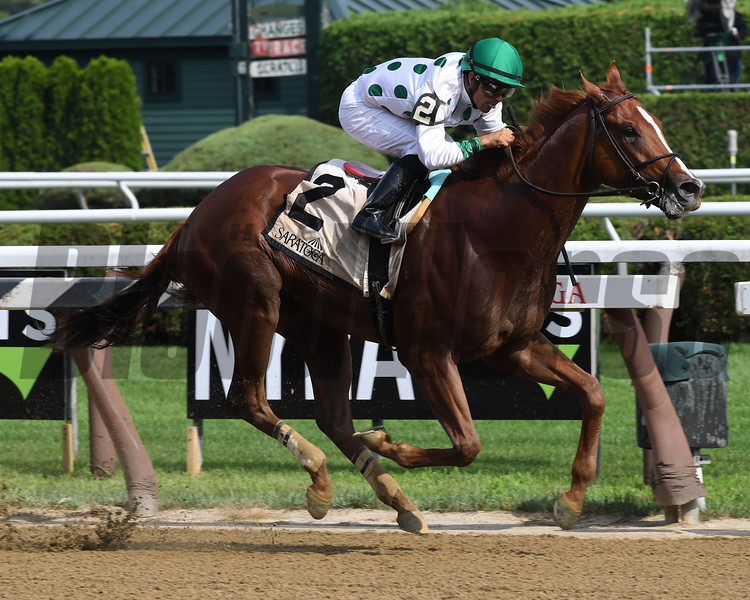 Promises Fulfilled wins the 2018 Amsterdam<br /> Coglianese Photos
