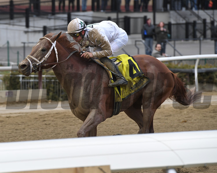 National Flag wins the 2018 Bay Shore<br /> Coglianese Photos/Joe Labozzetta