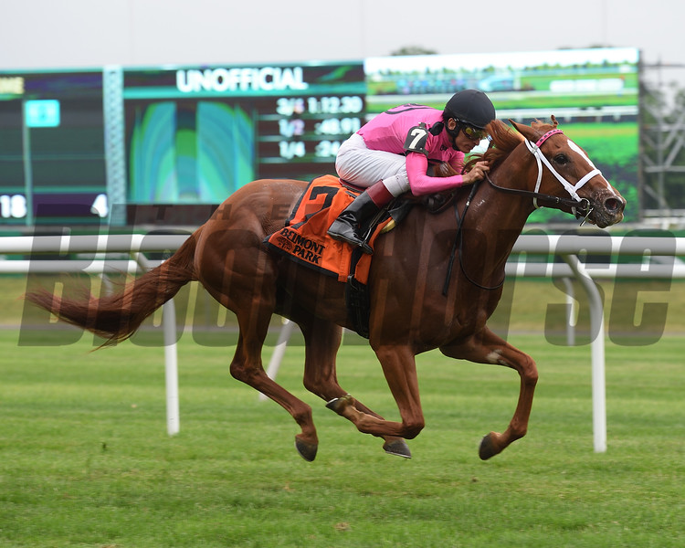 Got Stormy wins the 2018 Wild Applause Stakes<br /> Coglianese Photos/Elsa Lorieul