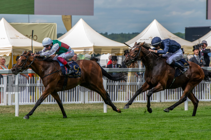 Without Parole wins St James's Palace Stakes at Royal Ascot June 19, 2018. Photo: Mathea Kelley