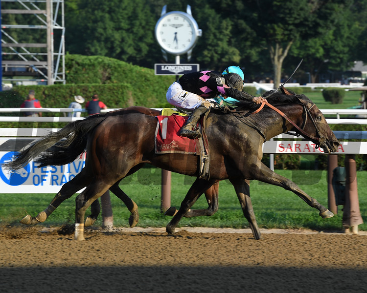 Realm wins the Alydar Stakes at Saratoga Sunday, August 5, 2018. Photo: Coglianese Photo
