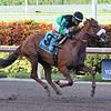 Spanish Harlem, Emisael Jaramillo, Barley Even Stakes, $75,000, Gulfstream Park, August 18, 2018