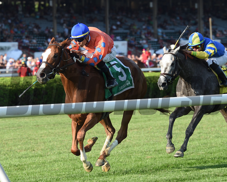 Monte Crista wins the 2018 Riskaverse Stakes <br /> Coglianese Photos/Elsa Lorieul