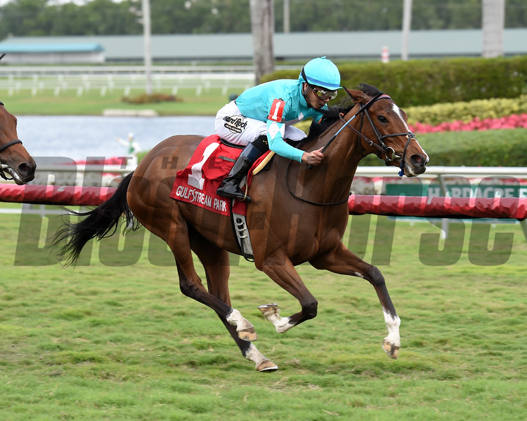 Thewayiam wins the 2018 Sweetest Chant Stakes<br /> Coglianese Photos