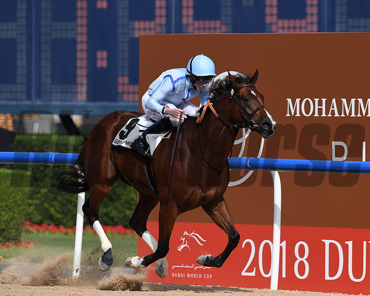 Heavy Metal, Ryan Moore, win the Godolphin Mile,  DWC 2018, Meydan Race Course, Dubai, UAE, 3-31-18, photo by Mathea Kelley/Dubai Racing Club