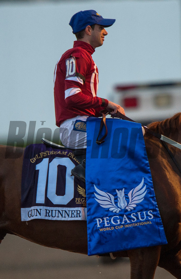 Gun Runner Florent Geroux Up wins The Pegasus Cup   @ Gulfstream Park   Jan 26 2018; Joe DiOrio/Winningimages.biz