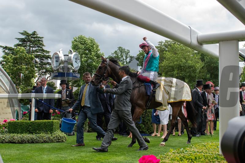 Calyx wins the Coventry Stakes at Royal Ascot June 19, 2018. Photo: Mathea Kelley