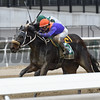 Aunt Babe wins the 2018 Franklin Square Stakes<br /> Coglianese Photos/Annette Jasko