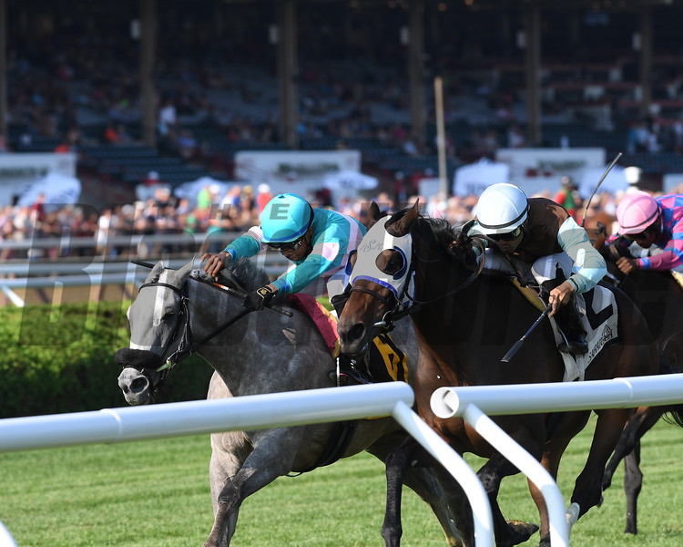 Goodbye Brockley wins the 2018 New York Stallion Series Stakes - Statue of Liberty Division<br /> Coglianese Photos/Chelsea Durand