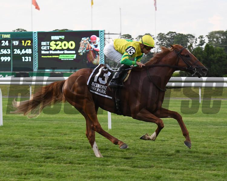 Therapist wins 2018 New York Stallion Stakes at Belmont Park. Photos: Coglianese Photos/Susie Raisher